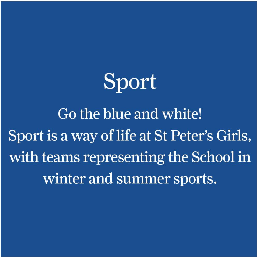 Sport back